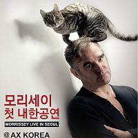 morrissey seoul date 6 may 2012 02