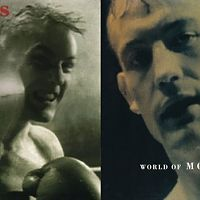 boxers-morrissey-covers