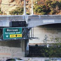 Morrissey_hollywood_bowl_101
