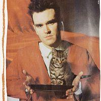 03-smash-hits-31-january-13-february-1985