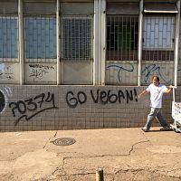 go_vegan_street_art_in_brazil